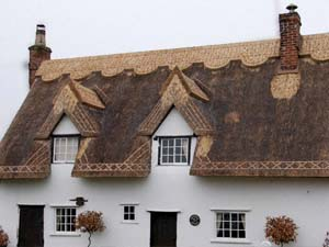 Long Straw Thatch Re-ridge