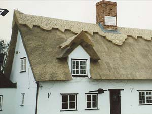 Thatching With Water Reed