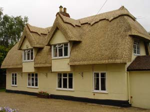 New Thatched Roof