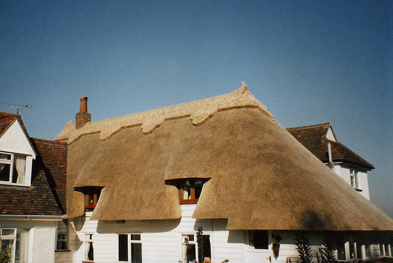 Types Of Thatch Roof Identification The Thatchers